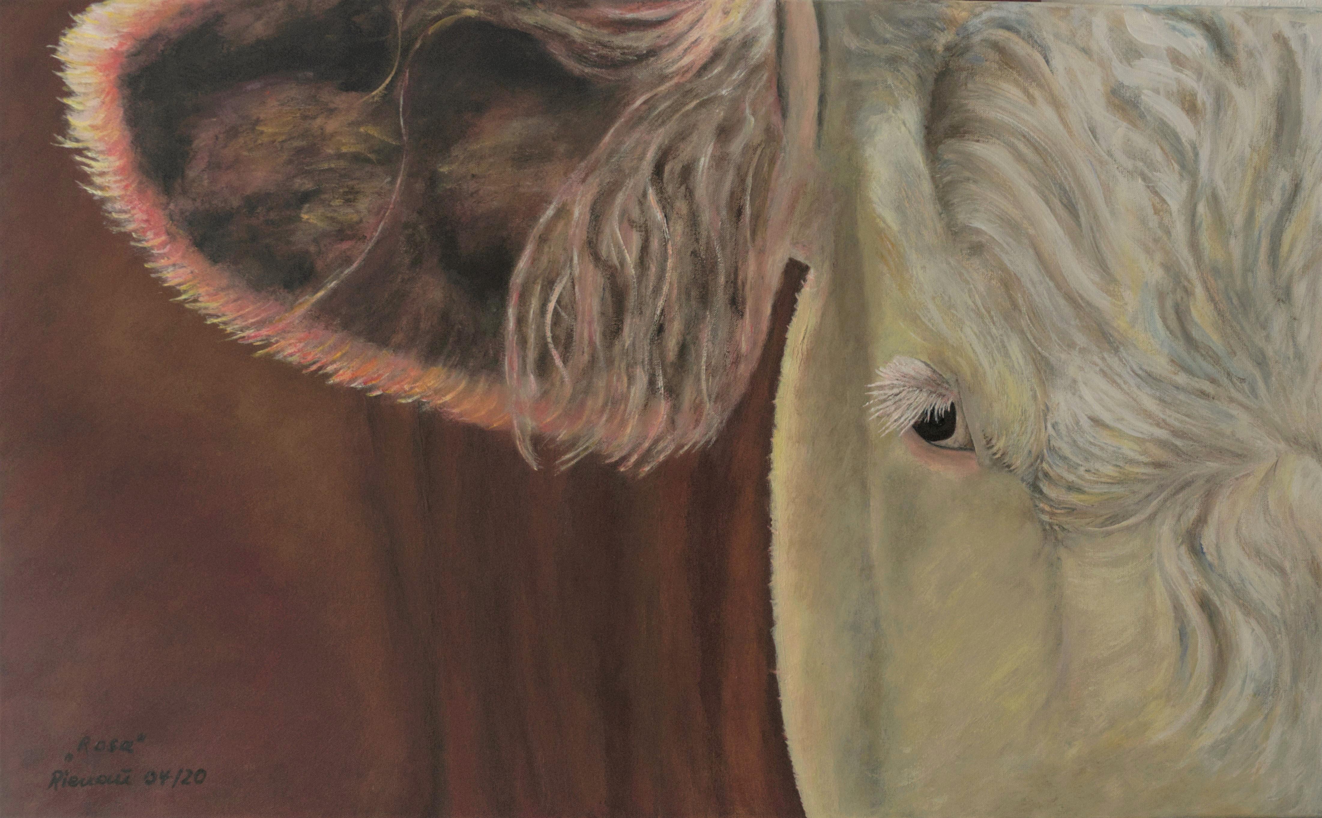 Kuhdetail, Gemälde